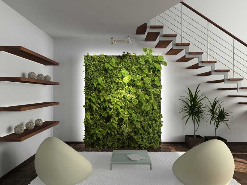 The Prototype - DIY Living Green Wall